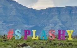 splashypic